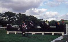National hunt horse race