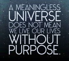 A meaningless universe does not mean we live our lives without purpose. I'm an atheist (inasmuch as that word means I don't see evidence or the need for supernature), but I try to live my life replete with purpose. Be kind; learn and discover as much as you can; share that knowledge; relieve suffering when you can; have tonnes of fun. That's why it's not pointless. We have the power to create life, and to show those lives wonder. Surely that's enough? It is for me.""