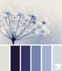 Winter tints - the deeper blues are fabulous and often overlooked for accessories around the house
