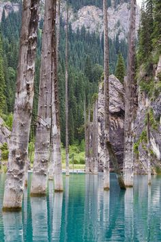 Nestled within the Tien Shan mountains, this ethereal body of water is known for the pole-like remnants of trees that rise from its vivid turquoise waters.