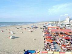 Scheveningen beach. If the weather is good, enjoy the sun! If it's raining, go to Sea Life or to the many restaurants in Scheveningen!