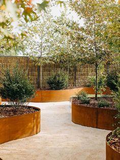 "Straightcurve 22"" Height Flexible Weathering Steel Edging Steel Garden Edging, Steel Edging, Landscape Design, Garden Design, Landscape Architecture, Weathering Steel, Raised Garden Beds, Raised Gardens, Santa Teresa"