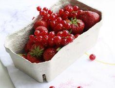 A importância das frutas vermelhas no inverno - Ideal Receitas