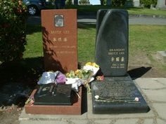 Bruce & Brandon Lee (Bruce Lee known for his many kung-fu movies) RIP