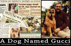 A Dog Named Gucci: The Story of One Man and a Dog Who Set out to Change the World