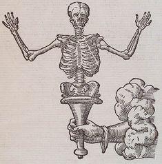 Claude Paradin, chanoine de Beaujeu. Devises Heroïques. Lyon : Ian de Tournes et Guil Gazeau, 1557. Page 255.