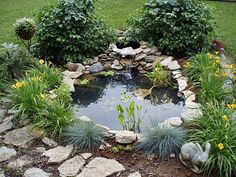 small pond in front yard (since we kill bushes and plants) #GardenPond