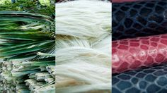 Ananas Anam has developed an innovative, natural and sustainable vegan non-woven textile called Piñatex™.