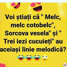 Voi știați? - Viral Pe Internet Motivational Quotes, Funny Quotes, Wreck This Journal, Drama, Cringe, Funny Images, Puns, Real Life, Comedy