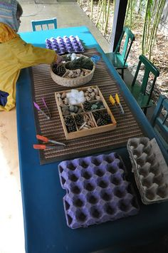 Fine motor provocation - egg cartons, tongs, natural found materials - Stumping in the Mud ≈≈ natural sorting - loose parts Reggio Classroom, Outdoor Classroom, Classroom Setup, Motor Activities, Preschool Activities, Funky Fingers, Material Didático, Outdoor Learning, Outdoor Play