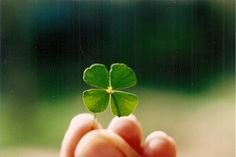 #charmcolorfully luck