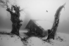 GHOST CROW HOUSE by Mr Friks  on 500px