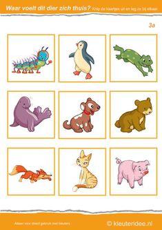 Waar voelt dit dier zich thuis 3a, kleuteridee.nl , Where the animal feels at home , free printable.