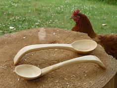 Be sure to have all spoons professionally inspected to be absolutely sure they are done, LOL .  -- Spoon Carving First Steps: Spoon Carving...