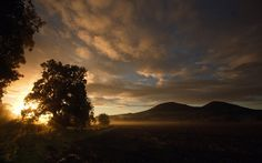 Dawn at Gattonside, near Melrose in the Scottish Borders looking towards the Eildon Hills with shafts of sunlight in the morning mist.     Picture: Curtis Welsh