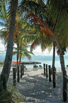 Path to Smathers Beach, Key West.