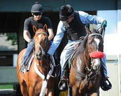 I'll Have Another and his buddy, multiple Grade 1 winner Lava Man.