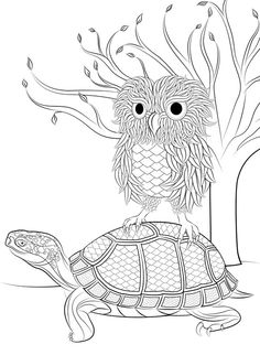 Owl and turtle design