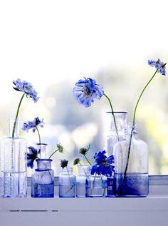 Blue Flowers in Glass Jars