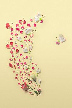 花びらを使って描かれた美しい色合いを楽しめるフラワーアート