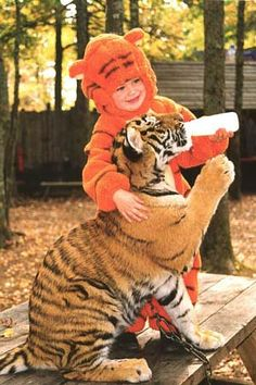 "TT.I.G.E.R.S. Preservation Station,  North Myrtle Beach is a free living tiger exhibit. See tigers up-close and uncaged.   ""At Preservation Station you can get nose to nose with 500 pound, adult tigers. You will have the opportunity to have a tiger cub sitting on your lap or to cuddle up with a monkey or ape."""