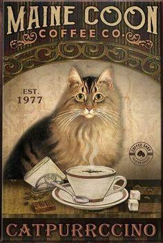 Pretty Cats, Beautiful Cats, Cat Posters, Cat Drawing, Cat Life, Cat Memes, Crazy Cats, Cool Cats, Illustrations