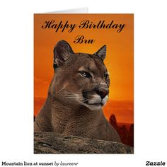 Mountain lion at sunset card | Zazzle.com
