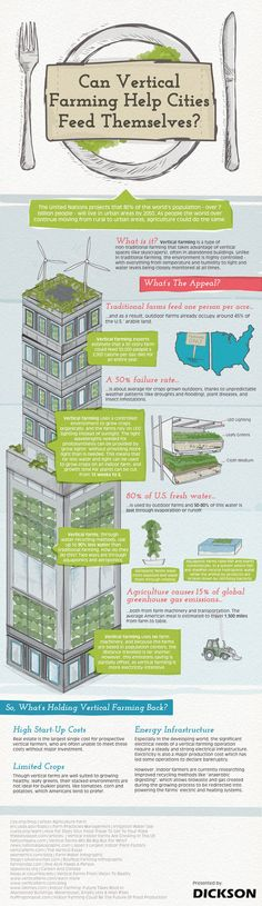 Dickson puts together an infographic that explores the many benefits of urban vertical farming. Hydroponic Farming, Hydroponic Growing, Farming Farming, Urban Agriculture, Urban Farming, Urban Gardening, Gardening Tools, Indoor Gardening, Agriculture Verticale