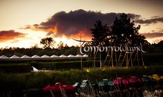 Tomorrowland - Belgium #sunset