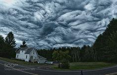 """L'âme des arbres: Etranges nuages """"undulatus asperatus"""""""