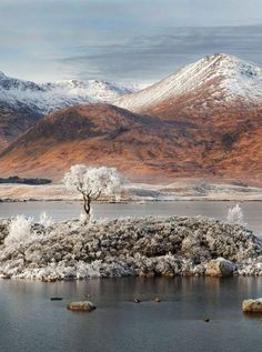 Snow-capped mountains in 'Ghost of Rannoch Moor' in Scotland by David Breen, winner of 'Clasic View'. (David Breen/ Take a View Landscape Photographer Of The Year Awards) Highlands Scotland, Scottish Highlands, Scotland Travel, Glencoe Scotland, Scotland Uk, Nature Landscape, Landscape Photos, Winter Landscape, Cumbria