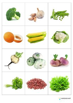 Print out and practice vegetable names - memory matching game or flash cards… Vegetable Crafts, Food Pyramid, Science And Nature, Kids Education, Fruits And Vegetables, Pre School, Preschool Activities, Kids And Parenting, Teaching Kids