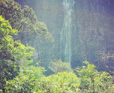 Incrível a cachoeira no meio da Serra da Canastra não é mesmo? 💚💛💙