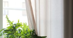 No nyt on huonekasveja! Rakastan viherkasveja kodin sisustuksessa, joten pakkohan se on ollut tänne keräillä muutamia piristyksiä tuomaan...