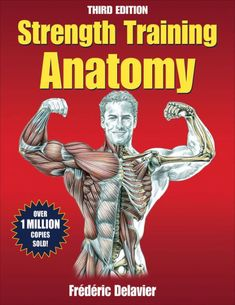 Strength Workout, Strength Training, Weight Training, Weight Lifting, Weight Loss, Bodybuilding, Frederic, Muscle Anatomy, Major Muscles