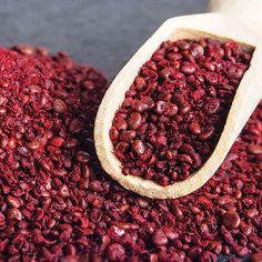 Foraged Flavor: Wild Sumac - Plant Profiles - Heirloom Gardener