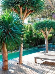 Simple garden design is really calming. Imagine sitting there surrounded by flowers and plants while you're enjoying the atmosphere. Nice feeling, right?Because of that, I have these 19 garden design pictures for you. These modern garden designs will inspire you and then you can remodel your small, old or stuffed backyard into a place where you and your friends will spend an awesome time together!