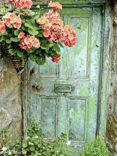 Weathered Door with Geraniums