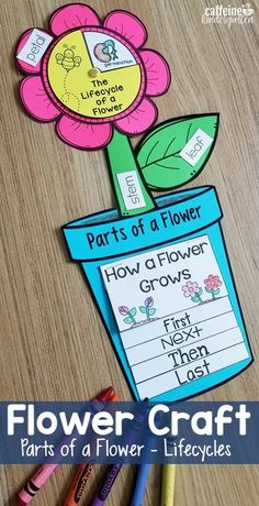 Such a fun activity to teach kids about parts of a flower and plant lifecycles! This art project is perfect for spring and teaches so much in one lesson! Download the printable here! #kindergarten #kindergartenteacher #science #partsofaplant
