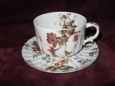 Antique Tea Cup and Saucer H & Co L Limoges France Haviland & Co Autumn Glory  | eBay
