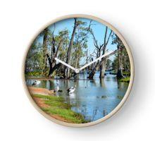 Pelicans Sun Baking, River Murray, South Australia. Clock