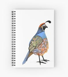 Calafornia Quail by scatterlings Quail, Iphone Cases, Throw Pillows, Watercolor, Bird, Artist, Animals, Painting, Design