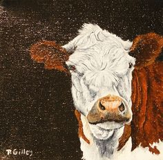 oil painting of cow by Patti Gilley http://www.pattigilley.com