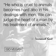 He who is cruel to animals . . . | Immanuel Kant