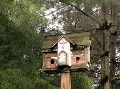 Myra Glandon's mossy green birdhouse Very primitive looking