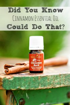 The Many Uses For Cinnamon Essential Oil