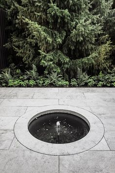 Montreal based design firm specializing in Architecture, Landscape Architecture, Urban Design and Interiors.Curtis designs durable and enduring projects for residential, institutional and public clients. Landscape Architecture, Landscape Design, Village Houses, Design Firms, Urban Design, Sidewalk, Home And Garden, Outdoor Decor, Landscapes