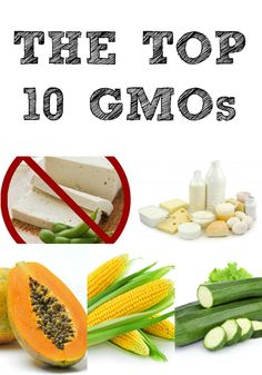 Do You Know What The Top Ten GMOs Are?