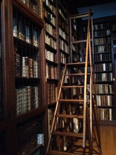 The small library at the Plantin-Moretus Museum, Antwerp. My own photo.