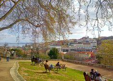 Quase secretos e longe do turismo de massas, descubra 11 miradouros desconhecidos em Lisboa para um passeio a não perder.